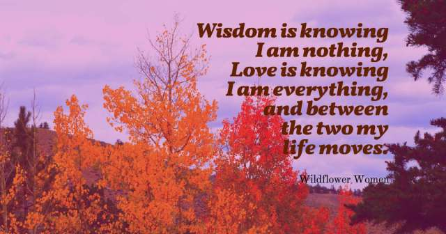 quotes-Wisdom-is-knowing-I-